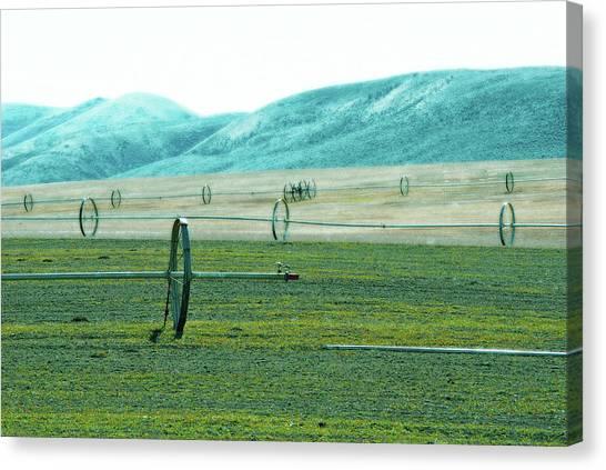 Sprinkler - Eastern Wa Canvas Print