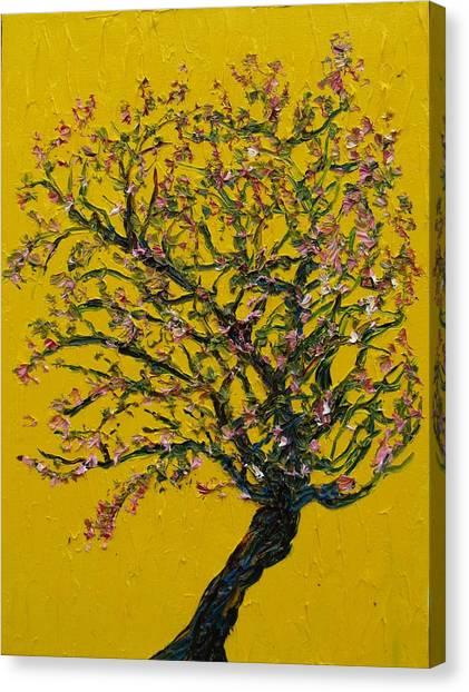 Sprung Canvas Print by Jacob Stempky