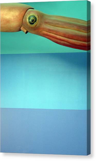 Squidoolie Canvas Print by Jez C Self