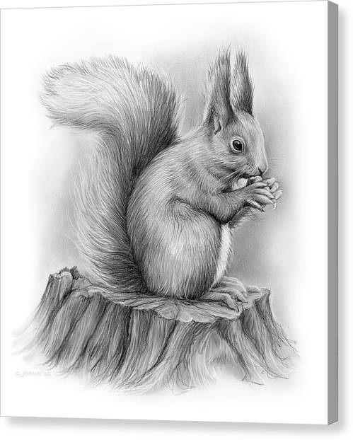 Pencils Canvas Print - Squirrel by Greg Joens