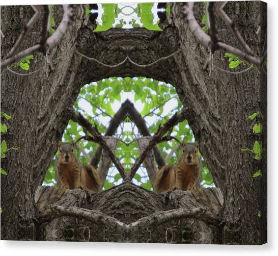 Squirrel Guardians Of The Doorway To A Green World Canvas Print