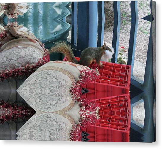 Squirrel Stealing Stuffing For A Nest Canvas Print