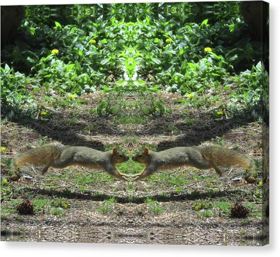 Squirrels Coming Together For A Kiss Canvas Print