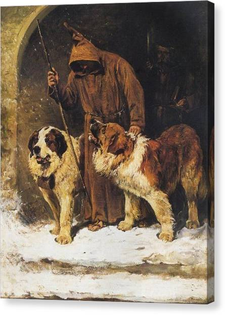 St. Bernards To The Rescue Canvas Print