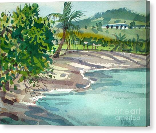 Coconut Canvas Print - St. Croix Beach by Donald Maier