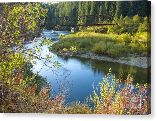 St. Joe River Canvas Print
