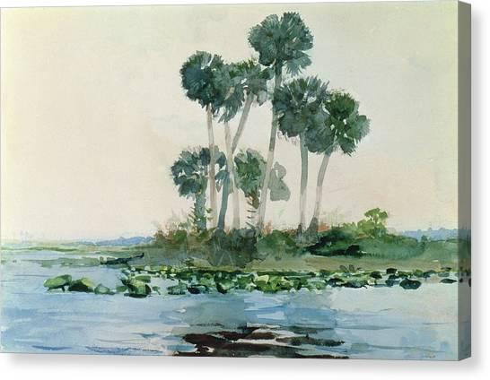 Winslow Canvas Print - St John's River Florida by Winslow Homer