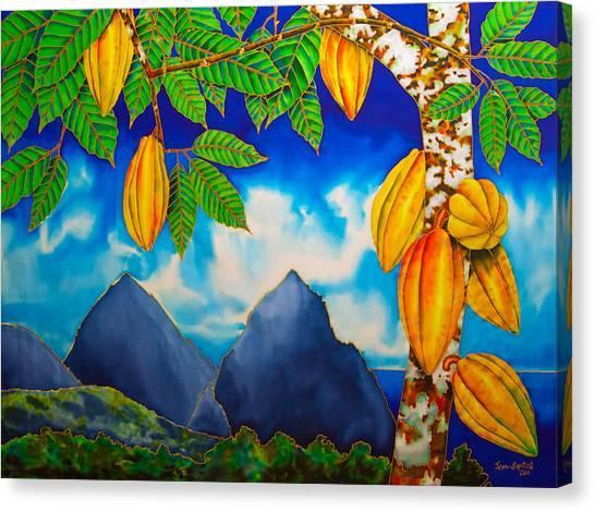 St. Lucia Cocoa Canvas Print