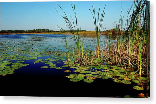 St. Mark's Lake Canvas Print