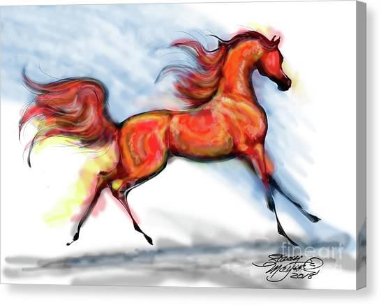 Staceys Arabian Horse Canvas Print