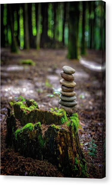 Mossy Forest Canvas Print - Stacked Stones And Fairy Tales by Marco Oliveira