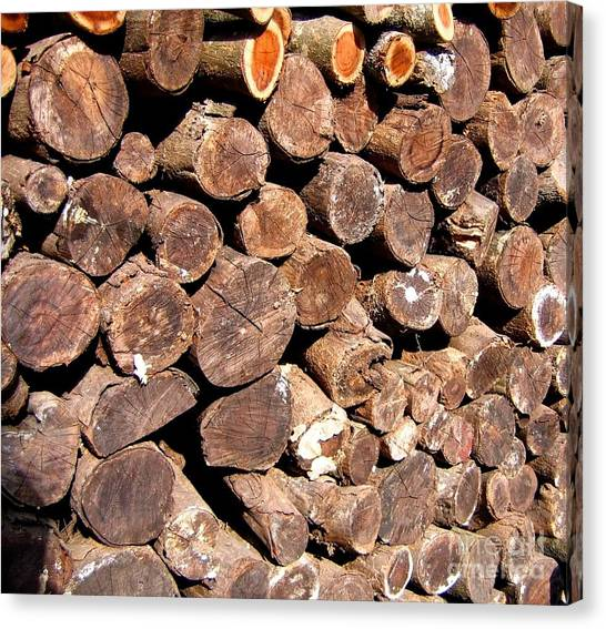 Stacked Tree Logs Canvas Print