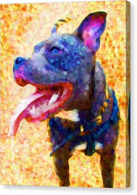 Bulls Canvas Print - Staffordshire Bull Terrier In Oil by Michael Tompsett