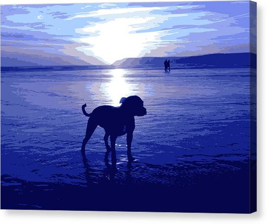 Bulls Canvas Print - Staffordshire Bull Terrier On Beach by Michael Tompsett