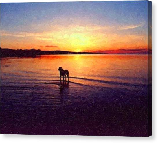 Bulls Canvas Print - Staffordshire Bull Terrier On Lake by Michael Tompsett