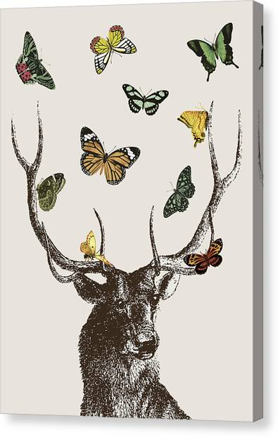 Vintage Canvas Print - Stag And Butterflies by Eclectic at HeART