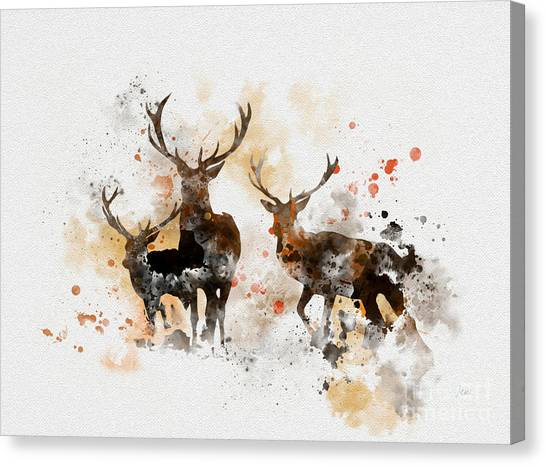 Woodland Canvas Print - Stags by My Inspiration