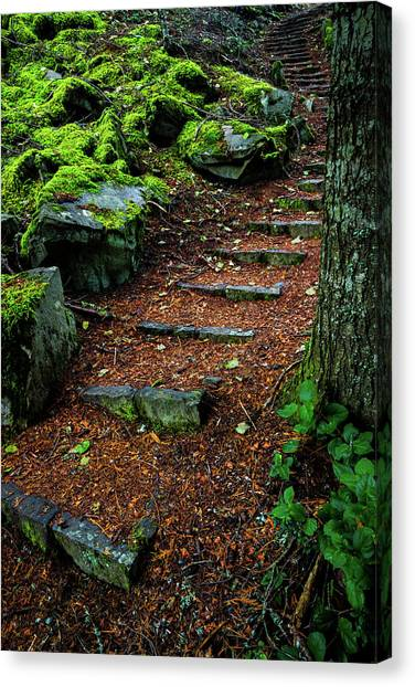Stairway To..... Canvas Print