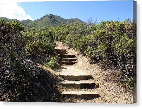 Canvas Print featuring the photograph Stairway To Heaven On Mt Tamalpais by Ben Upham III