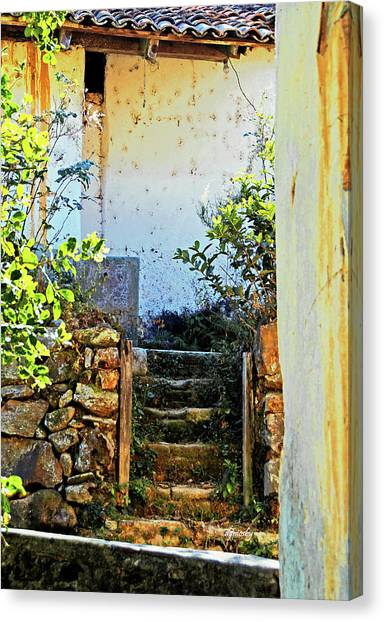 Stairway7880 Canvas Print by David Mosby