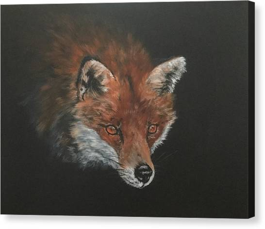 Red Fox In Stalking Mode Canvas Print