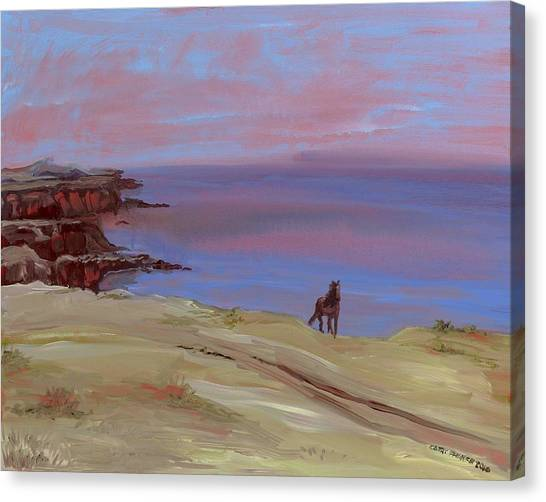 Stallion At Dingle Bay Canvas Print by Cathy France