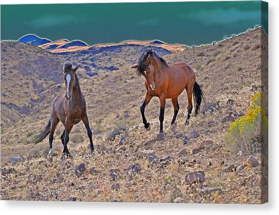 Stand Off Canvas Print