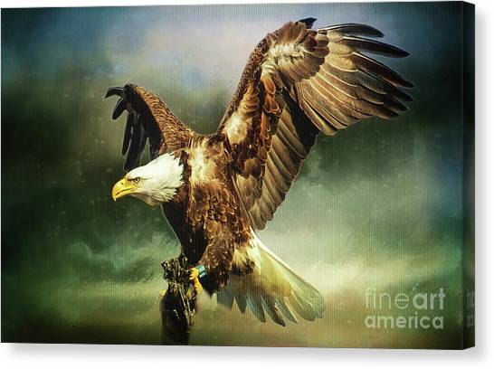 Standing Against The Storm Canvas Print