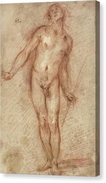 Baroque Canvas Print - Standing Male Nude by Cecco Bravo