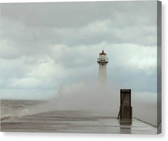 Standing Tall Against The Storm Canvas Print