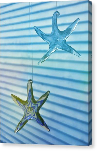 Star Bright Canvas Print by JAMART Photography