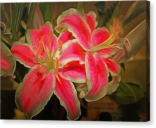 Star Gazer Lilies Canvas Print