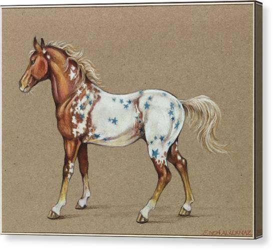 Star Spangled Horse Canvas Print by Eden Alvernaz