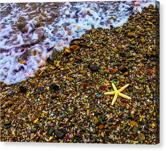 Saltwater Life Canvas Print - Starfish Among Stones And Sea Glass by Garry Gay