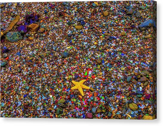 Saltwater Life Canvas Print - Starfish On Glass Beach by Garry Gay