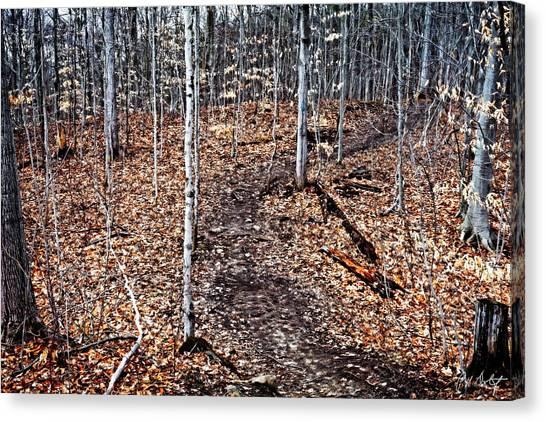 Starkey Canvas Print - Starkey Hill Path by Phill Doherty