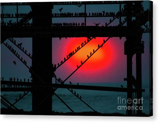 Starlings Against The Setting Sun Canvas Print