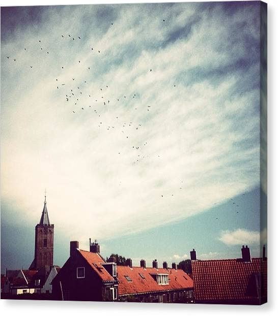 Starlings Canvas Print - Naarden by Kristy Atkinson
