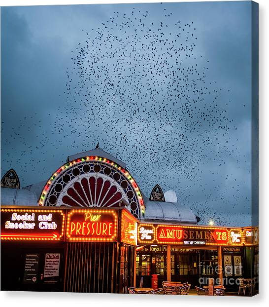 Starlings Over The Neon Lights Of Aberystwyth Pier Canvas Print