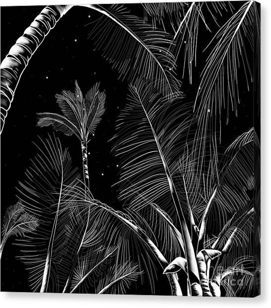 Starry Moonlit Palms Canvas Print