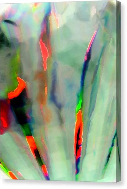 Stay Focused II Canvas Print by Florene Welebny