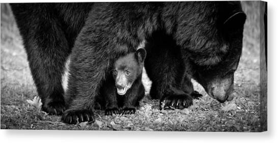 Staying Close-bw Canvas Print