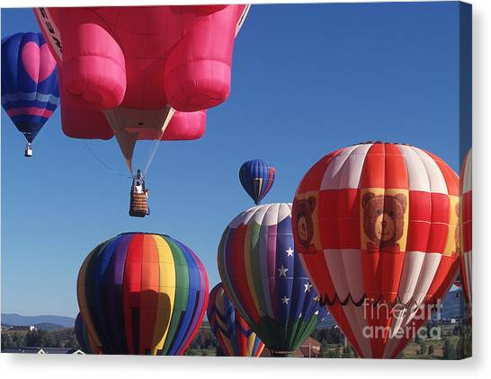 Steamboat Springs Balloons Canvas Print by Stan and Anne Foster