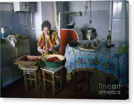 Stefania Cleans Strawberries In Chortkiw Ukraine Canvas Print by Yuri Lev