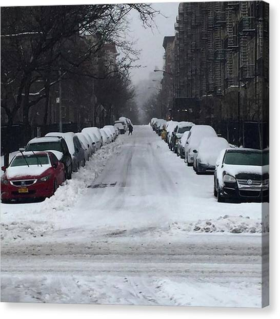 #stella! Happy ❄️ Day, #nyc Canvas Print by Gina Callaghan