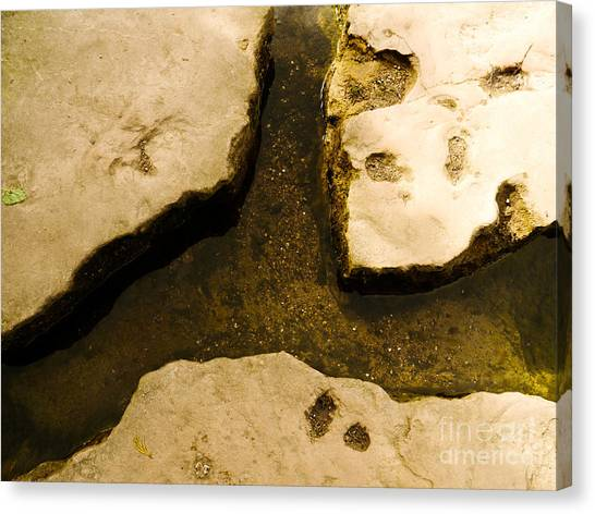 Stepping Stones Canvas Print by Jamel Watson