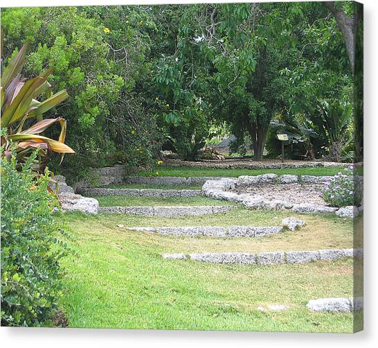 Fairchild Tropical Botanic Garden Canvas Prints   Fine Art America