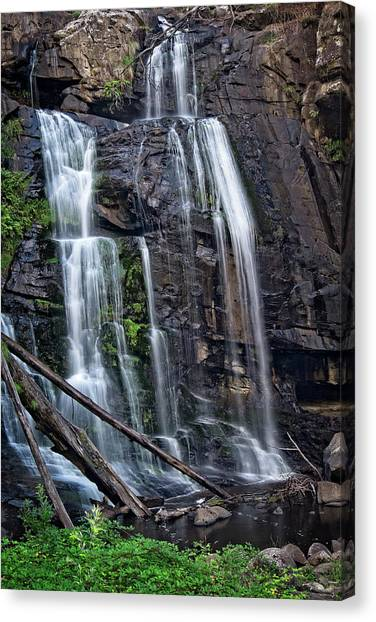 Great Otway National Park Canvas Print - Stevensons Falls by Catherine Reading