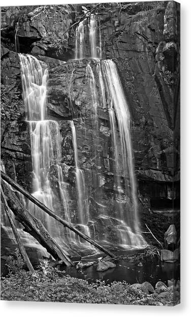 Great Otway National Park Canvas Print - Stevensons Falls In Black And White by Catherine Reading