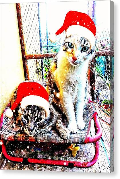 Stevie Mouse And Emmy Waiting For Christmas Canvas Print